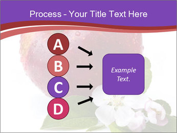 Apple Blossom PowerPoint Templates - Slide 94