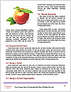 0000063857 Word Templates - Page 4