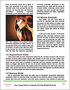 0000063862 Word Templates - Page 4