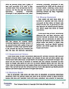 0000063863 Word Templates - Page 4