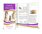 0000063864 Brochure Templates