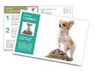 0000063867 Postcard Templates