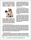 0000063867 Word Templates - Page 4