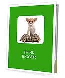 0000063868 Presentation Folder