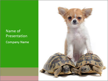 Puppy and Two Turtles PowerPoint Templates - Slide 1