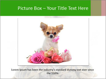 Puppy and Two Turtles PowerPoint Template - Slide 15