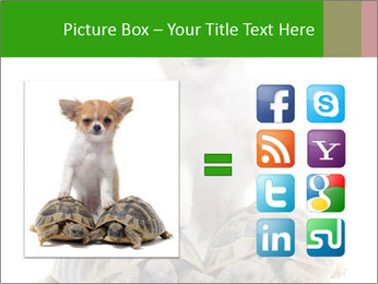 Puppy and Two Turtles PowerPoint Template - Slide 21