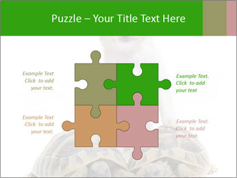 Puppy and Two Turtles PowerPoint Templates - Slide 43