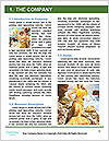 0000063873 Word Template - Page 3