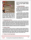 0000063910 Word Template - Page 4