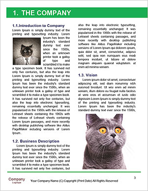 0000063914 Word Template - Page 3