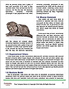0000063914 Word Templates - Page 4