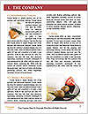 0000063947 Word Template - Page 3