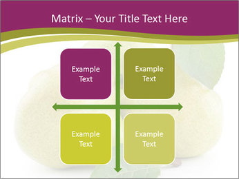 Three Ripe Pears PowerPoint Templates - Slide 37