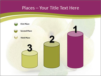 Three Ripe Pears PowerPoint Templates - Slide 65