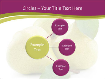 Three Ripe Pears PowerPoint Templates - Slide 79