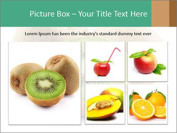 Green Kiwi PowerPoint Templates - Slide 19