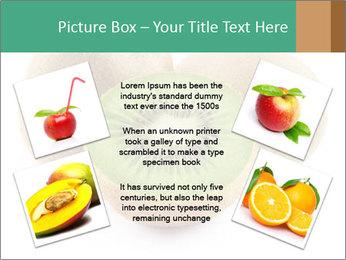 Green Kiwi PowerPoint Templates - Slide 24