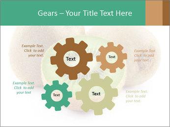 Green Kiwi PowerPoint Templates - Slide 47