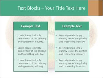 Green Kiwi PowerPoint Templates - Slide 57