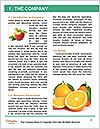 0000063952 Word Templates - Page 3