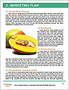 0000063952 Word Templates - Page 8