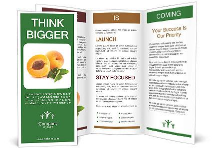 0000063953 Brochure Template