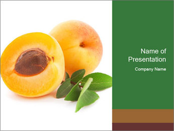 Honeyed Apricot PowerPoint Templates - Slide 1