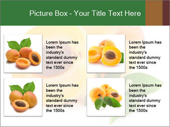Honeyed Apricot PowerPoint Templates - Slide 14