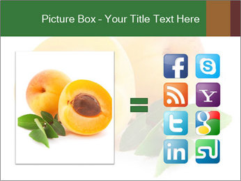 Honeyed Apricot PowerPoint Templates - Slide 21
