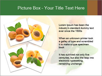 Honeyed Apricot PowerPoint Templates - Slide 23