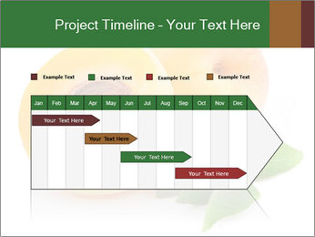 Honeyed Apricot PowerPoint Templates - Slide 25