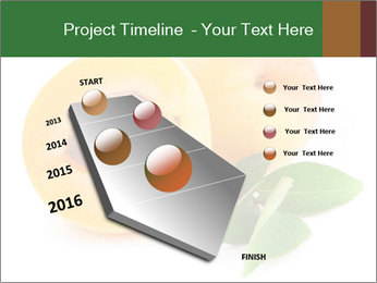 Honeyed Apricot PowerPoint Templates - Slide 26