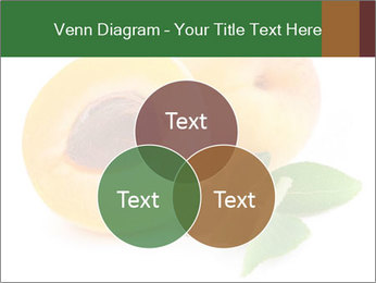 Honeyed Apricot PowerPoint Templates - Slide 33