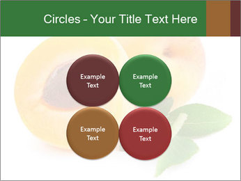 Honeyed Apricot PowerPoint Templates - Slide 38