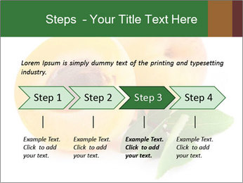 Honeyed Apricot PowerPoint Templates - Slide 4