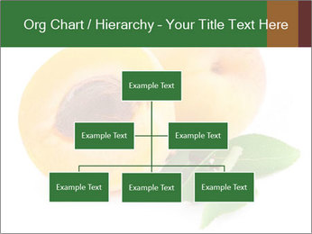 Honeyed Apricot PowerPoint Templates - Slide 66