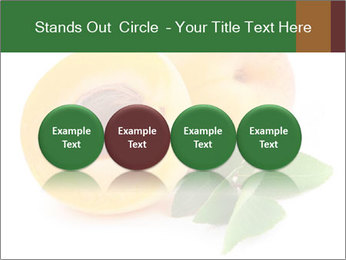 Honeyed Apricot PowerPoint Templates - Slide 76