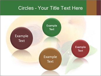 Honeyed Apricot PowerPoint Templates - Slide 77