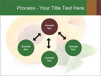 Honeyed Apricot PowerPoint Templates - Slide 91