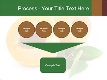Honeyed Apricot PowerPoint Templates - Slide 93