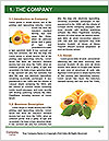 0000063953 Word Templates - Page 3