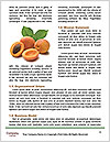 0000063953 Word Templates - Page 4