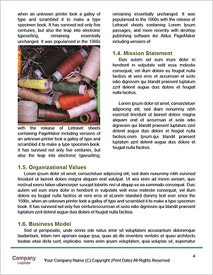 0000063964 Word Template - Page 4