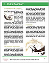 0000063968 Word Template - Page 3