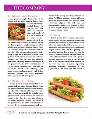 0000063976 Word Template - Page 3