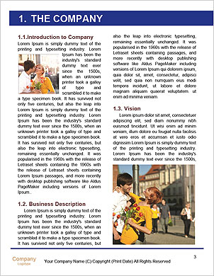 0000064010 Word Template - Page 3