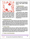 0000064014 Word Template - Page 4