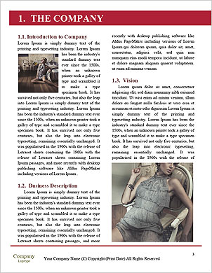 0000064017 Word Template - Page 3