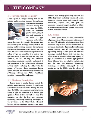 0000064032 Word Template - Page 3